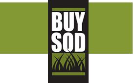 Buy Sod